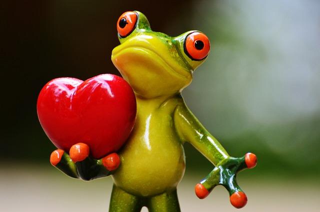 Grenouille coeur